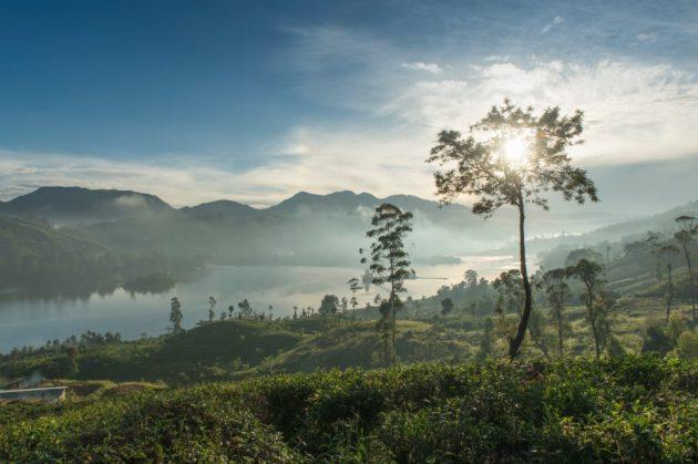 Tea Trails Sri Lanka Luxe Diary