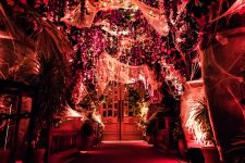 We've got some of the best most spooktacular parties for you this Halloween! Enjoy your Halloween weekend in style! Read more in The Luxe Diary.